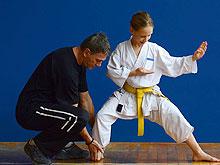 karate_220w